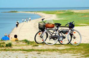 Radreisen durch Ostfriesland